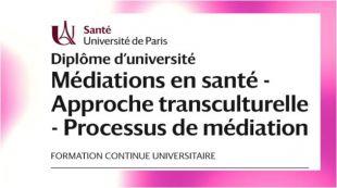 Formation DU - Médiation en Santé. Centre Babel.JPG